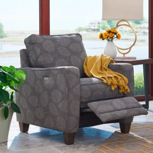 LaZBoy Furniture Makenna Duo Accent Chairs 1 Sofas & More