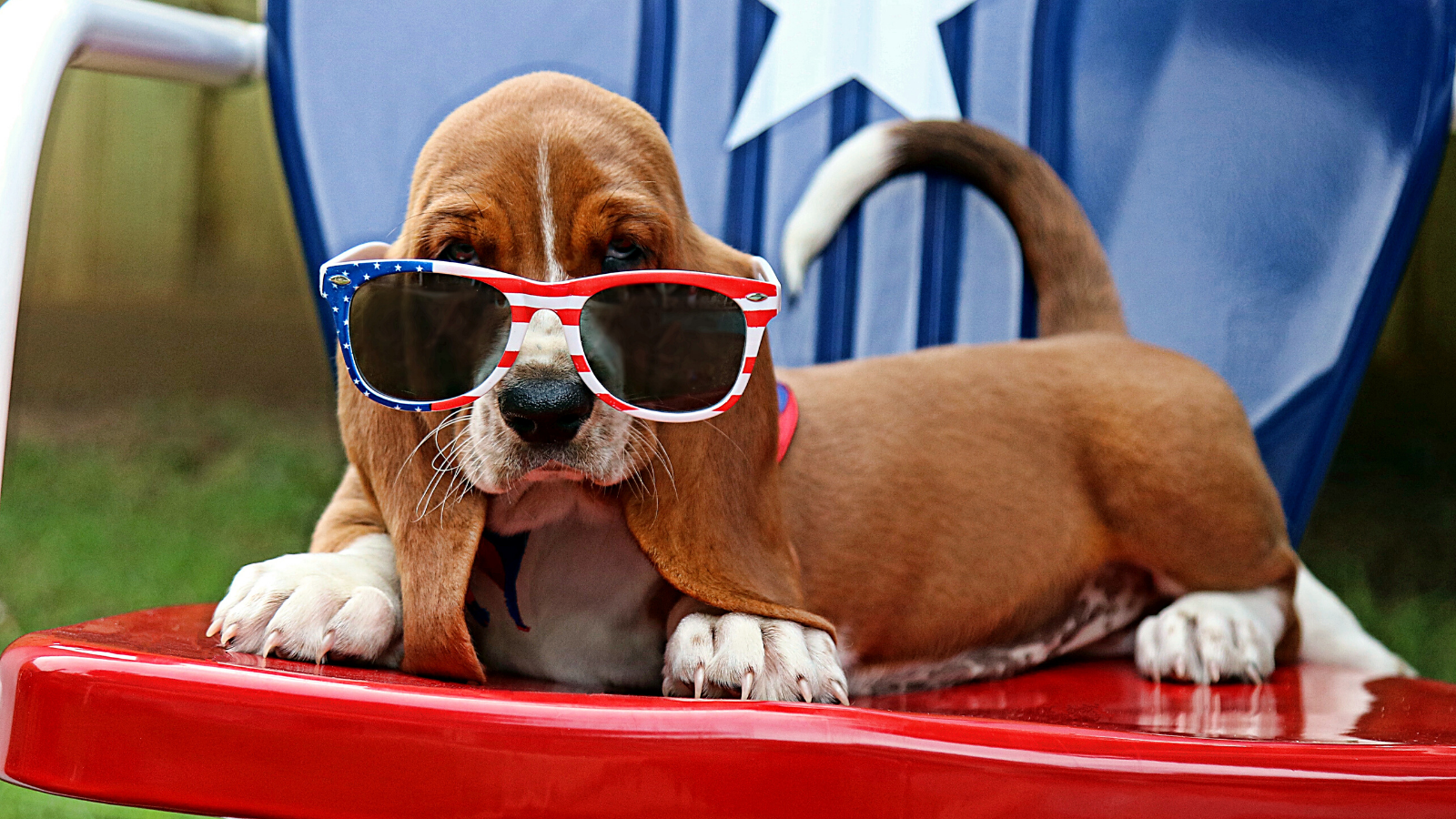 13 Easy Tips for a Star-Spangled Fourth of July Party - featured 2