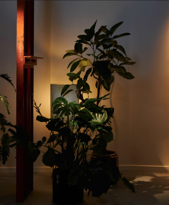 Light It Up! | On-Trend Lighting Options - Can