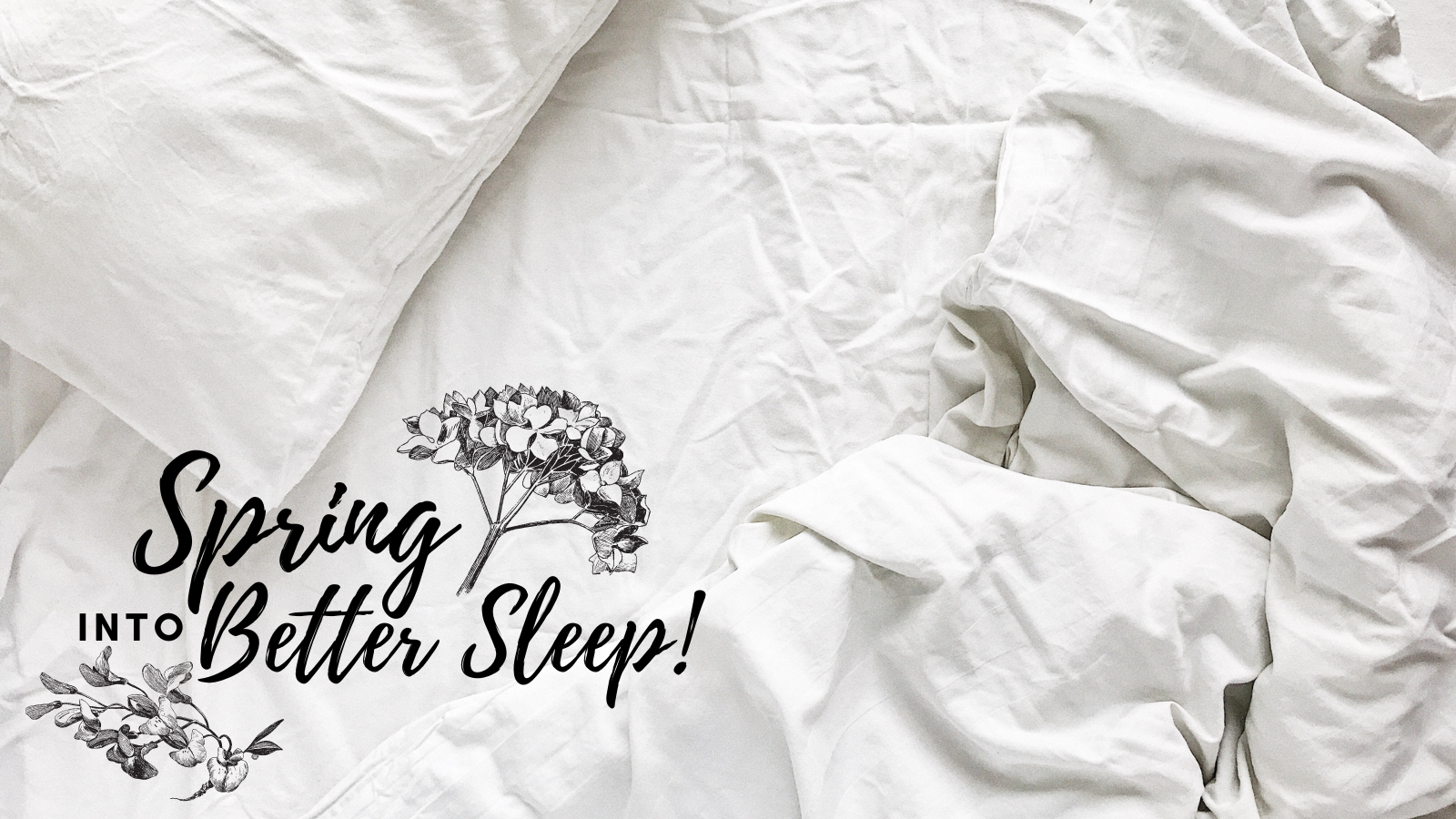 Spring Into Better Sleep: Spotlight on the Sleep Store | Sofas & More - featured 2